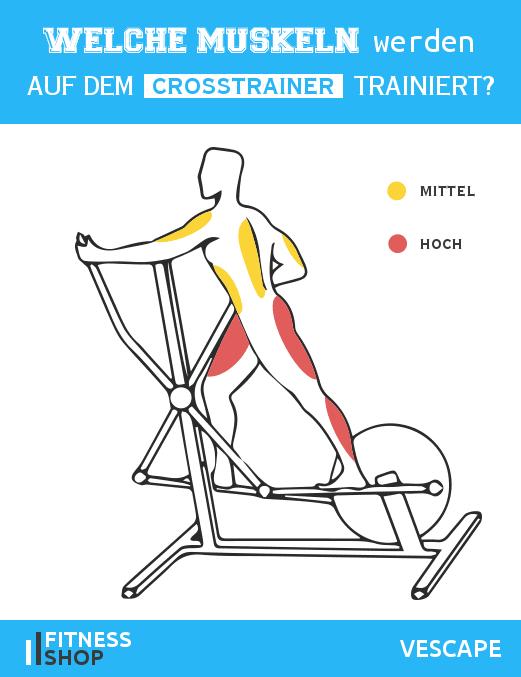 Crosstrainer welche Muskeln werden trainiert
