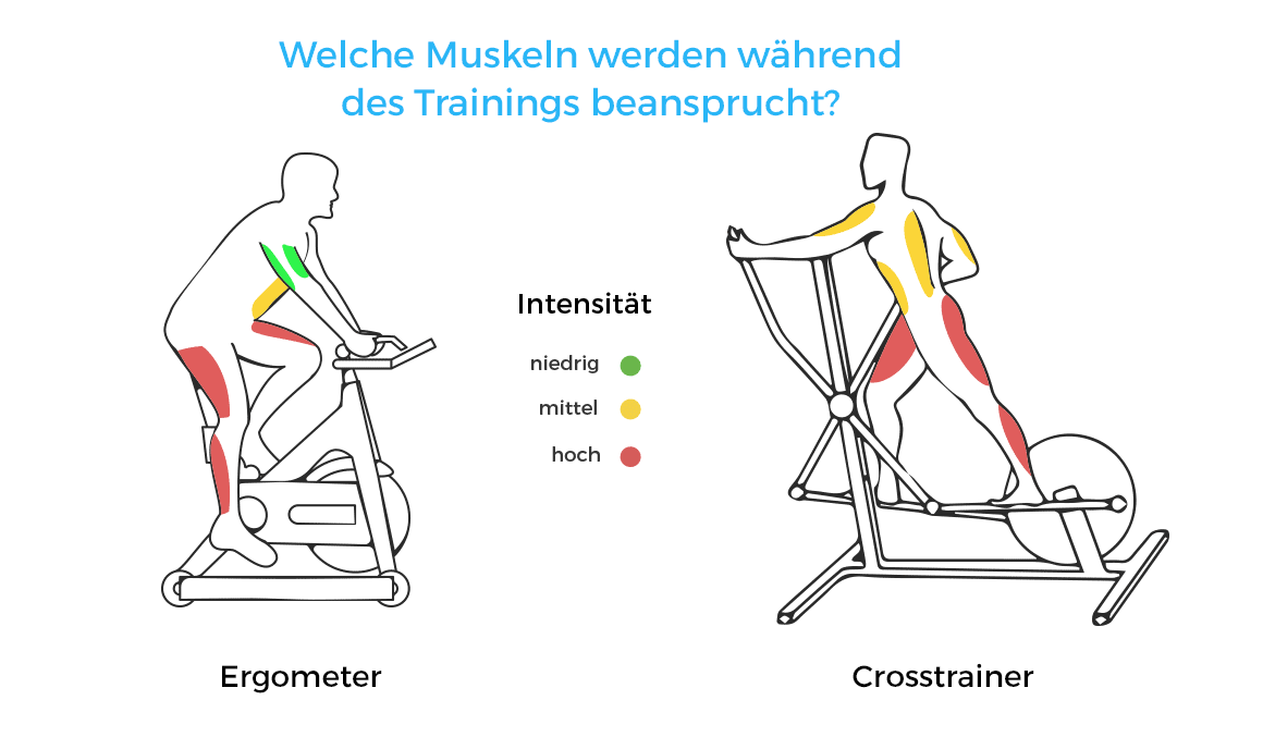 heimtrainer oder crosstrainer was ist besser. Black Bedroom Furniture Sets. Home Design Ideas